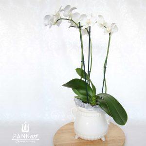 Veliki cvetlični lonček PANNdora